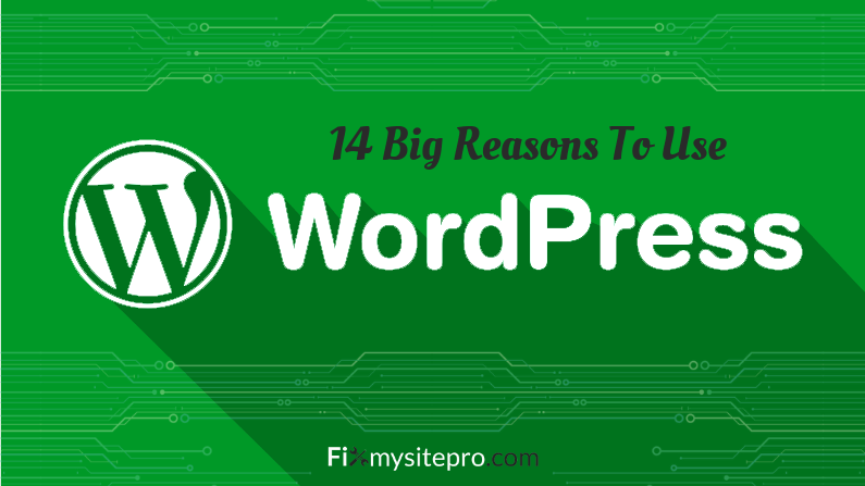 14 Big Reasons To Use WordPress for website
